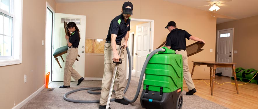 Spring Hill, FL cleaning services